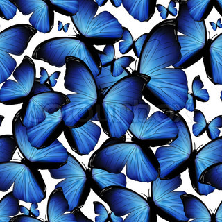 seamless background with blue butterflies