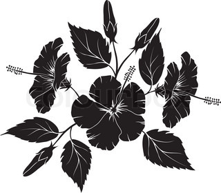 Hibiscus, blomstermotiver element for design , vektor illustration