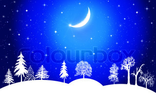 Winter christmas landscape in night with snow flakes