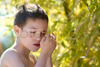 A young child in nature