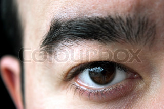 Closeup of a mans brown eye and eyebrowShallow depth of field