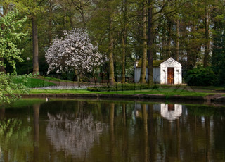 Reflection of blooming magnolia soulangeana and little house in the belgian park in springtime