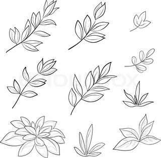 Blade af forskellige planter , skal du indstille vektor konturer på en hvid baggrund