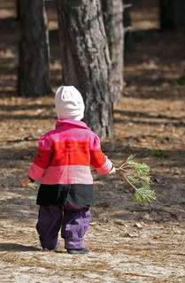 Kid walking with pine branch in the forest