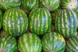 Ripe big water-melons with a green striped skin on a counter of a market