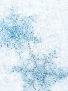 Beautiful blue snowflakes isolated on snow, winter holiday background