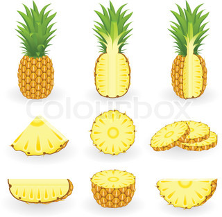 Vector Illustration of pineapple