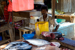 Fishing in Sri Lanka is a tough job but this is the way they earn their living