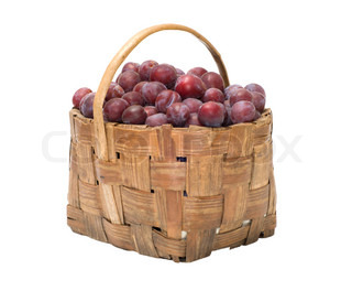Wattled basket with ripe plums it is isolated on a white background