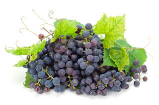 The red real grapes which have been grown up in Northern Europe and the Baltic countries