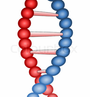 Molecule of DNA, genetic information isolated close up