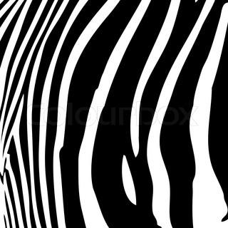 Zebra -Streifen -Muster in schwarz und weiß , dass große Werke als Hintergrund