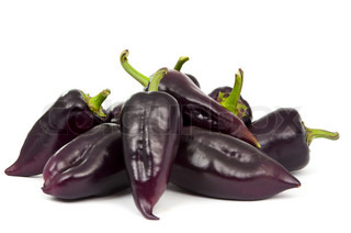 purple pepper on a white background