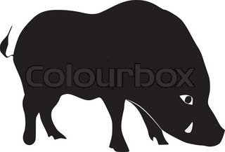silhouette of wild boar