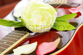 Romantic love concept - white rose on red guitar, background
