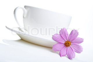 white cup of tea and flowers isolated on a white background