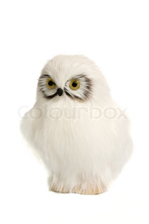 white toy owl isolated on the white background