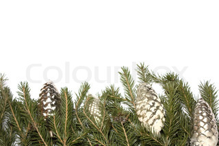 border from fur-tree branches with christmas decorations on a white background is isolated