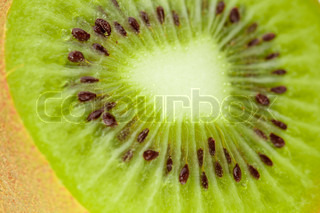 Macro food collection - Kiwi Small DOF, isolated on white background
