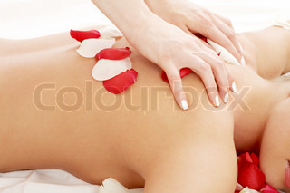 classical picture of massage hands and rose petals