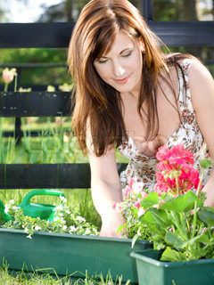 bright picture of lovely housewife potting plants
