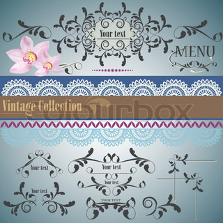 Calligraphic vintage design elements and page decoration Vector set
