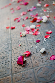 Sparse rose petals on the floor after wedding ceremony