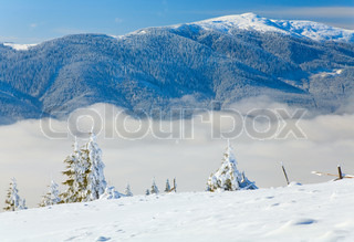 winter mountain landscape with rime and snow covered spruce treesand some wood ruins (view from Bukovel ski resort (Ukraine) to Svydovets ridge)