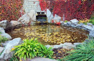 Pond water surface with abscissed leaf and small waterfall in autumn park