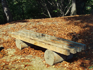 Wood bench on sun illuminate glade in the obscure autumn park