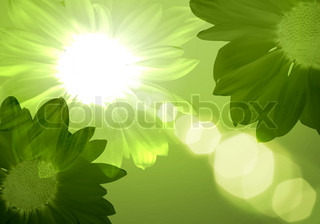 Illustration of floral colour background with light spot