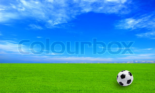 Soccer ball on field of green grass and blue sky