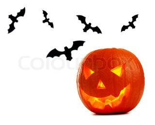 Halloween græskar og flagermus isoleret på hvidt