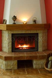 fireplace in which wood burns