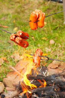Bohemian sausage cooked over campfire