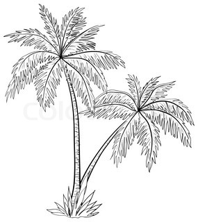 palm trees with leaves, monochrome contours on white background