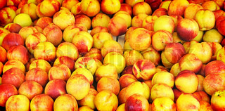 A ripe red-yellow peaches at the market