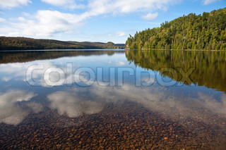 Clear water forest lake under blue sky