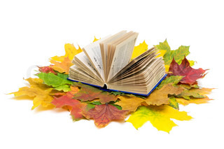 open book and autumn maple leaves isolated on white background