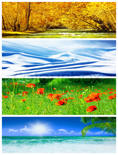 Four seasons collage, panoramic images of beautiful natural landscapes at different time of the year, autumn, winter, sprig and summer weather, planet earth life cycle concept