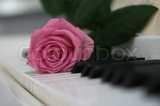 Love on the Piano