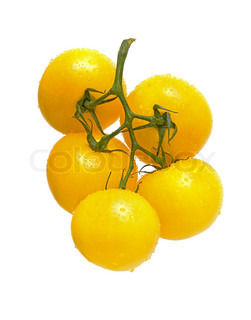 a bunch of tomato yellow on a white background closeup