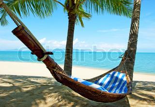 Tomme hængekøje mellem palmerne træer ved sandstrand
