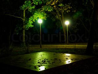 night chessboard with leaf litter