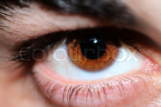 close-up on human eye