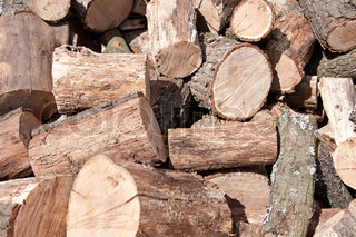Pile of firewood. Natural material, alternative energy.