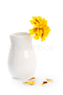 marigold flower in vase isolated on a white background