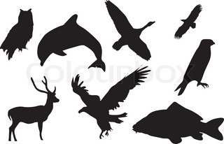 Eight black silhouettes of animals
