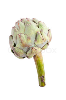 photo shot of green artichoke on white background