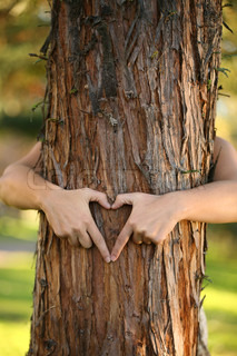 A nature lover environmentalist with arms wrapped around a pine tree and fingers formed in the shape of a heart